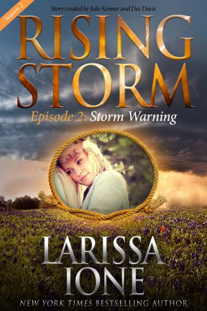 Storm Warning - E-Book Cover