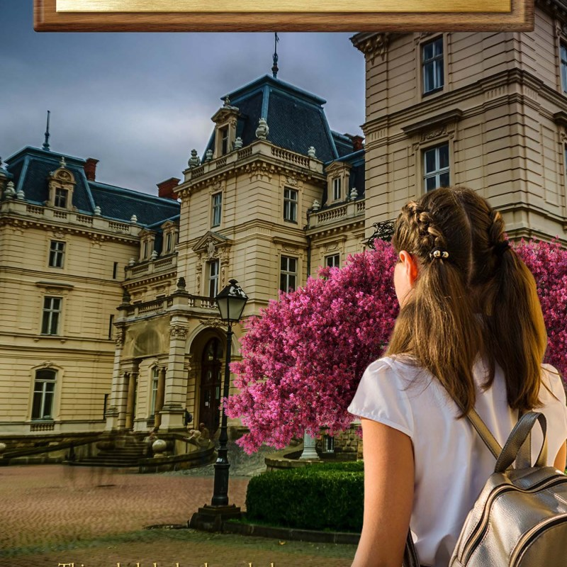 "Spotlight on ""Dickensen Academy"" by Christine Grabowski"