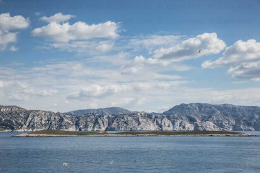 Ile Plane ou ile Calsereigne ou Casereigne, archipel de Riou, Parc National des calanques. En arriere plan le massif des calanques avec au centre le mont Carpiagne et à droite le mont Puget.