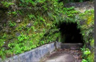 Tunnel levada Encumeada, Madère, julien Amic