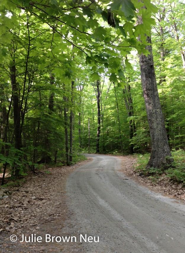 JulieN_Roads