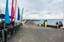 Cowes-0254