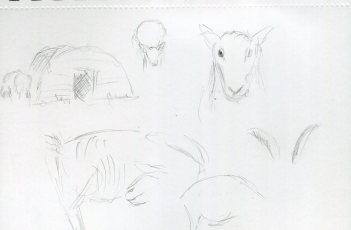animal-scan-1089