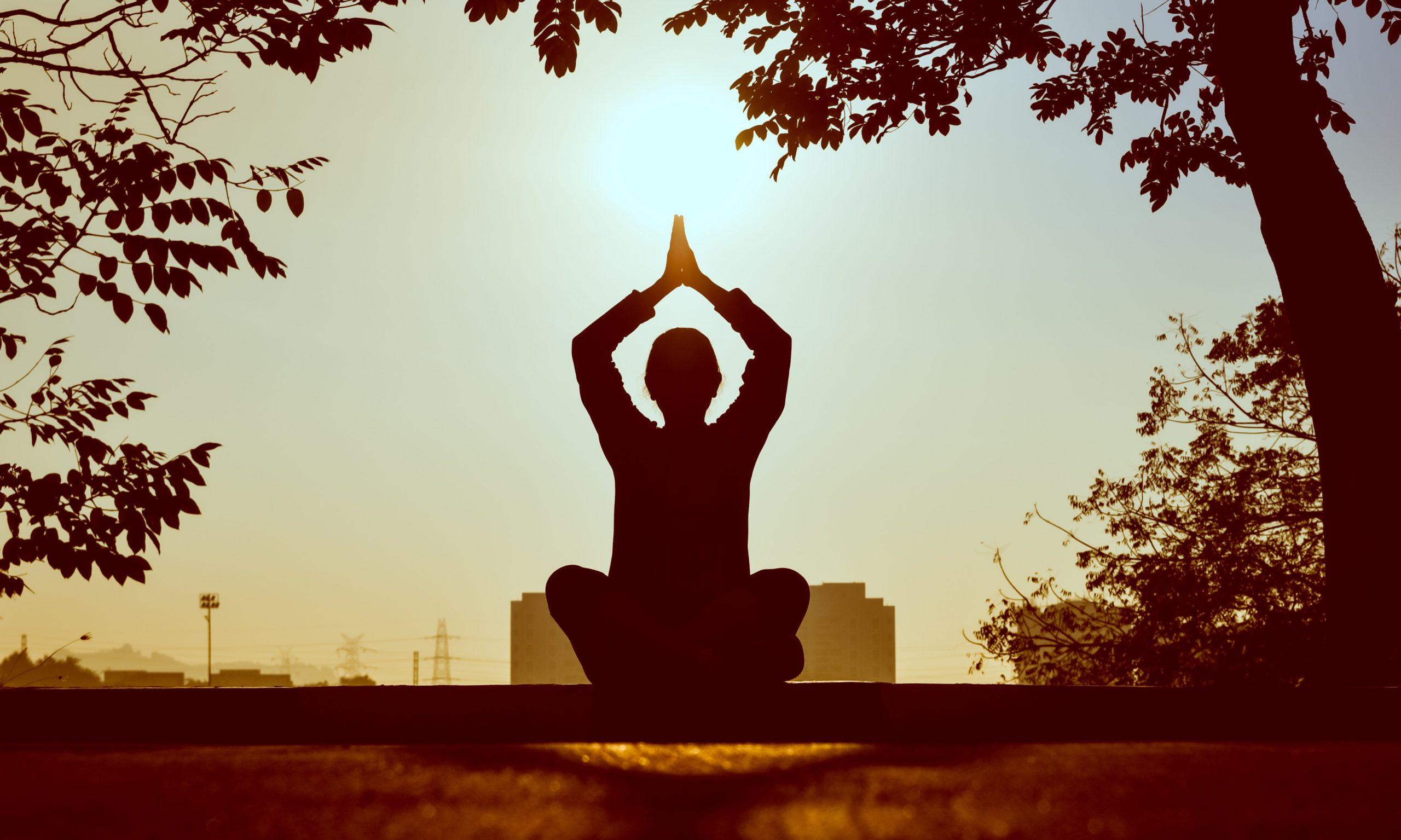 Le Yoga au quotidien: les Niyamas