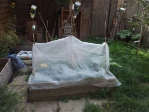 Raised bed covered with bubble wrap hung on bamboo pole frame