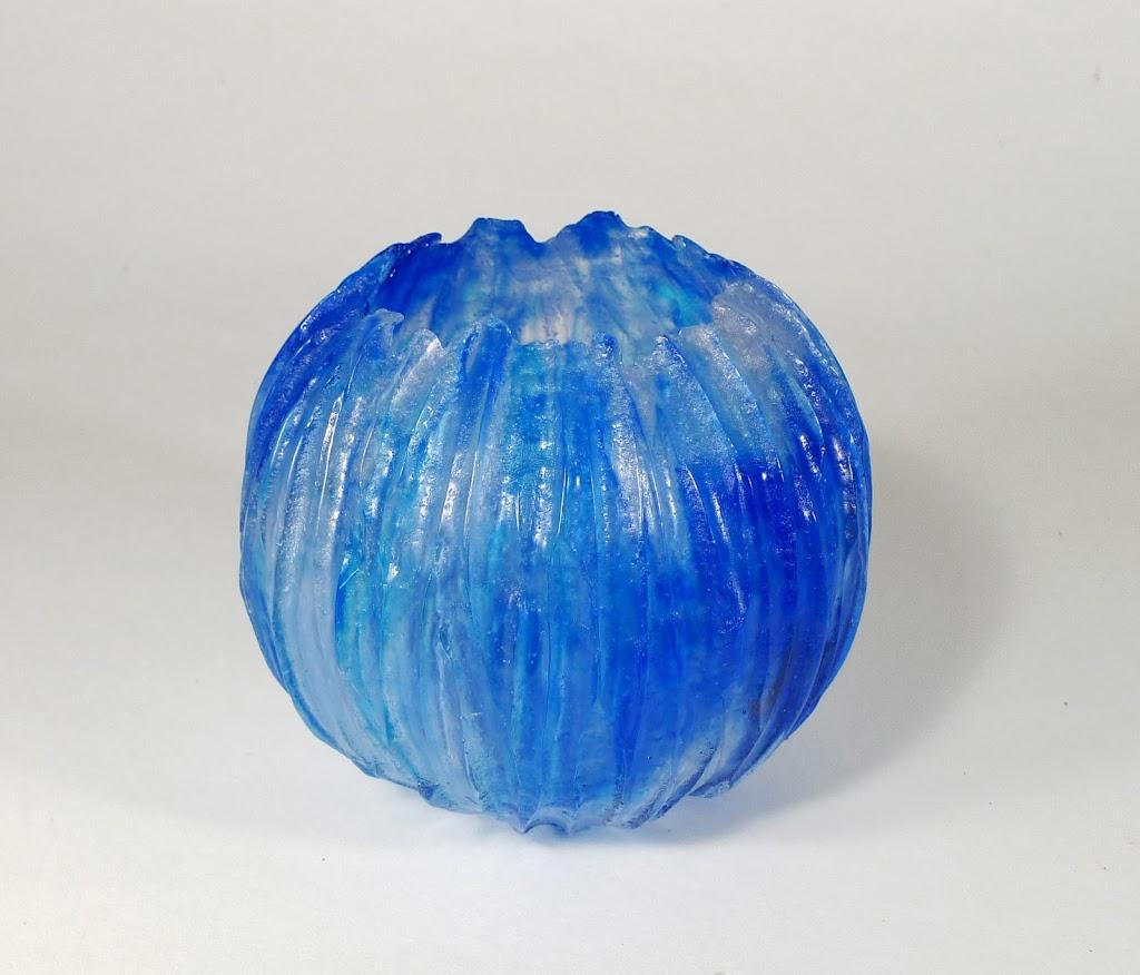 Cnidaire bleu