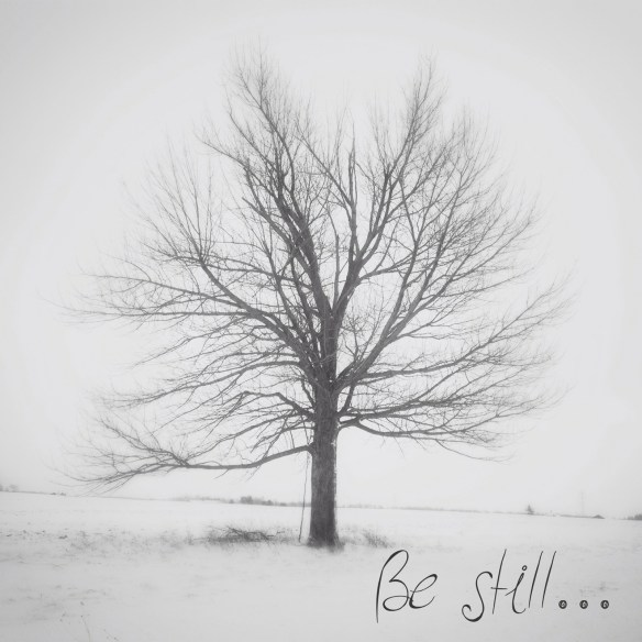 Thank you, winter_can_wait, for another great image.