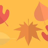 22 Septembre, 1er jour d'Automne. Ma séléction Pinterest!