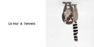 """le mur à l'envers Obra para la exposición colectiva """"El muro al revés"""" en la Embajada de Francia en Madrid Fotografía digital 20x20 cm (díptico) 2009"""