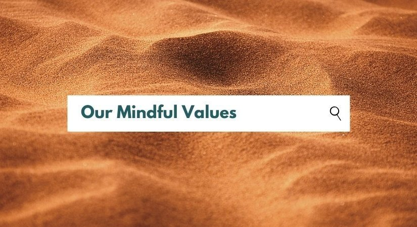 About Julisa - Mindful Values