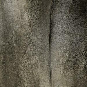 Tree Flesh