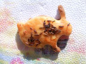 соленки с майонеза - зайче