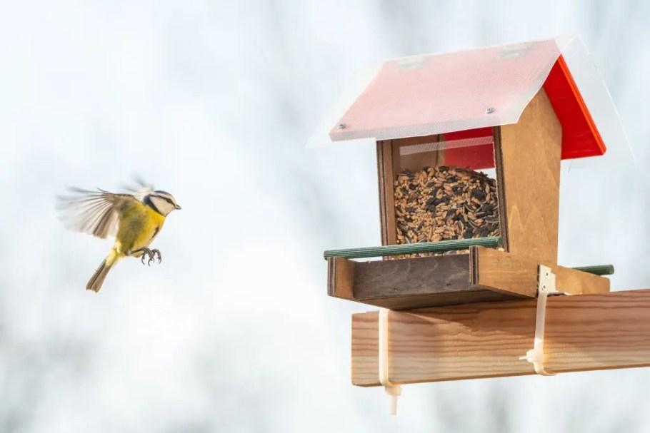 düz balkon fikirleri-kuş besleyici