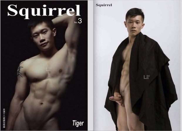 Squirrel No.3 | TiGer