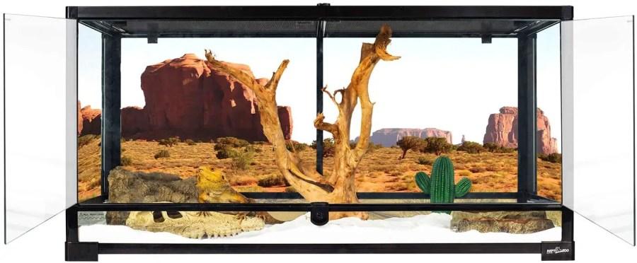 REPTI ZOO Glass Natural Terrarium