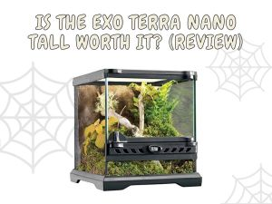 exo terra nano tall enclosure review