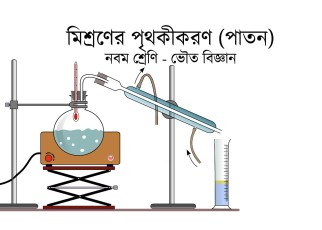 paton-in-bengali