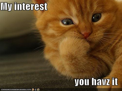 funny-pictures-my-interest-cat