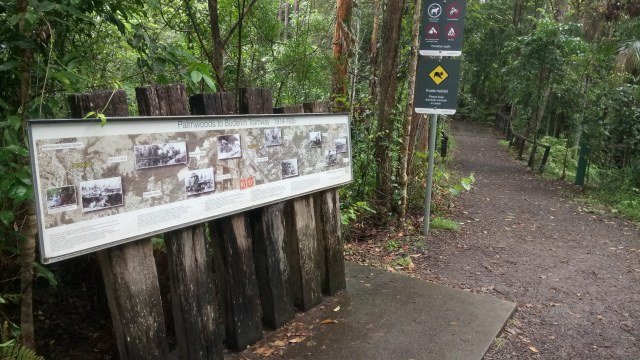 The remnants of the Buderim tramway are now a walking track.