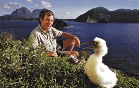 Lord Howe Island's unique treasures flag climate change peril