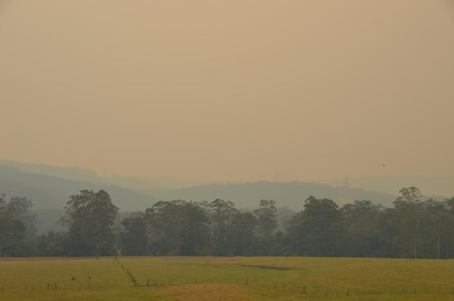 Asthma+on+the+rise+in+Lake+Macquarie