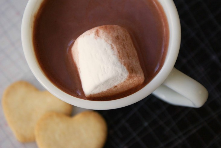 Swiss Miss Hot Chocolate with Coconut Milk | June's Journal image 2