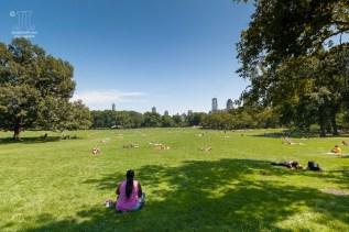 Diese Liegewiese zieht am Nachmittag jung und alt zum entspannen an. http://junghahn24.com/wir-sind-in-new-york/