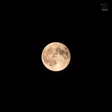 Die Mondfinsternis 2018 ist Geschichte. Der Vollmond erstrahlt im Licht der Sonne in voller Größe und Schönheit am Himmel