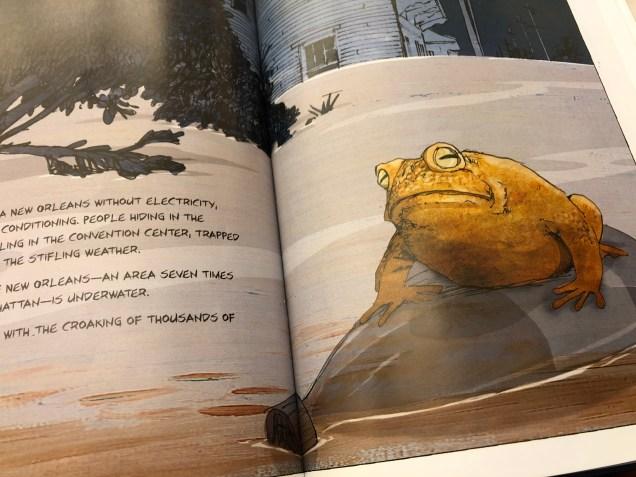 2018 Frog Encounters Fan 13 2