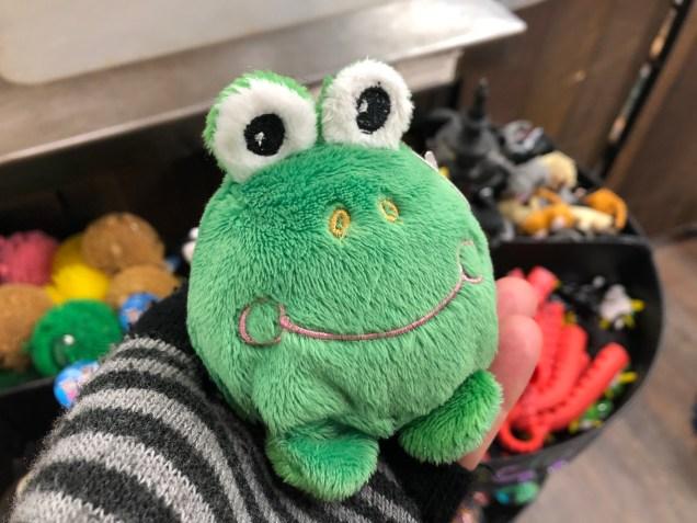 2018 Frog Encounters Fan 13 B3