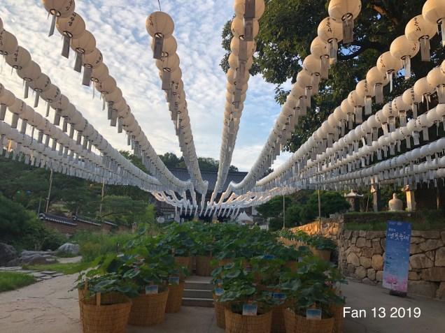 2019 Bongeunsa Temple by Fan 13.2