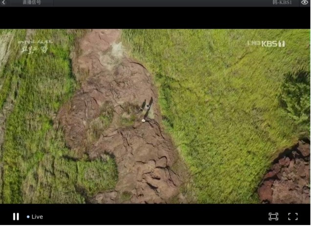 2019 10 3 Jung Il woo in Wild Map Documentary. Episode 1.5