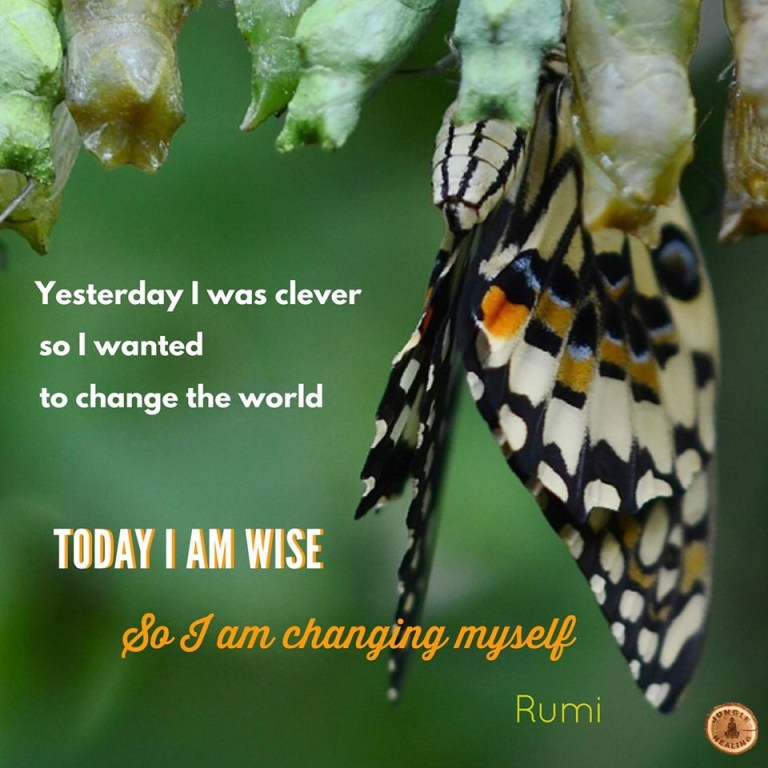 Affirmation of the week by Rumi: Yesterday I was clever so I wanted to change the world. Today I am wise so I am changing myself. Quote set against a background of a butterfly emerging from a cocoon.