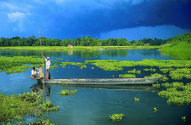 The Beautiful River Island of Majuli - the World's largest Inhabited River Island. Image Wikipedia