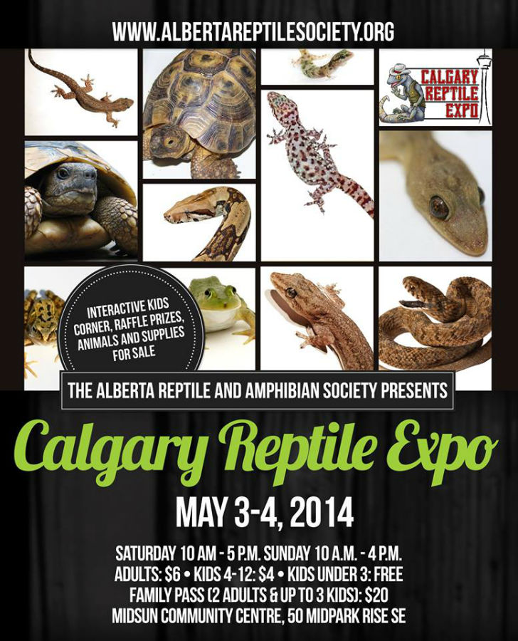 Super Special Sale for the Spring Calgary Reptile Expo