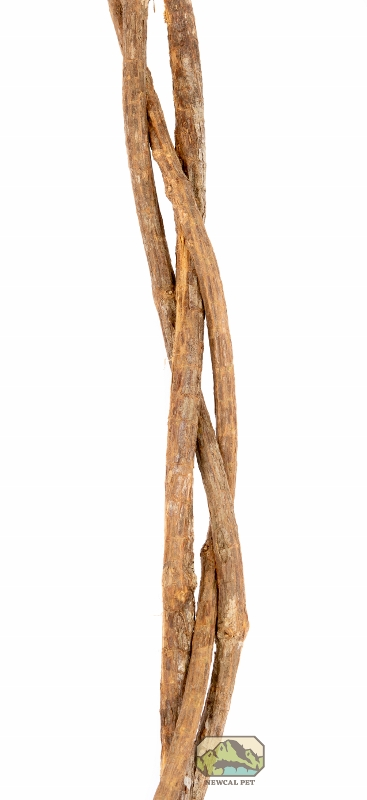 newcal braided trio vine