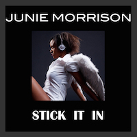 Junie Morrison Stick It In