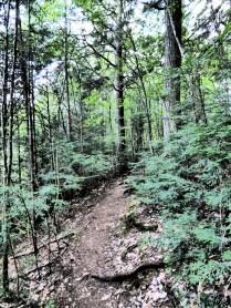 """Unterwegs auf dem """"Track & Tower Trail"""""""