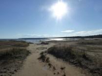 Am Singing Sands Beach