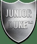 Silver Junior Duke Award Badge