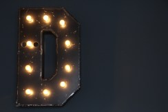 """The """"D"""" in Distrikt's back wall."""