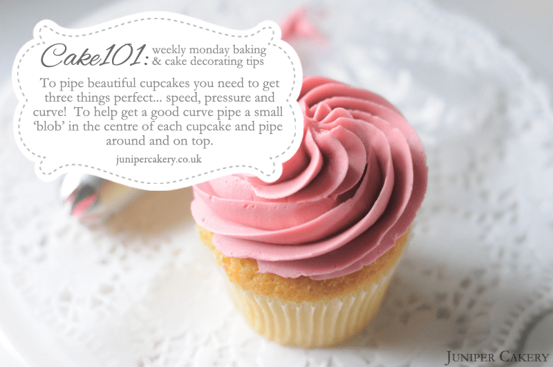 CAKE101 Piping Cupcakes