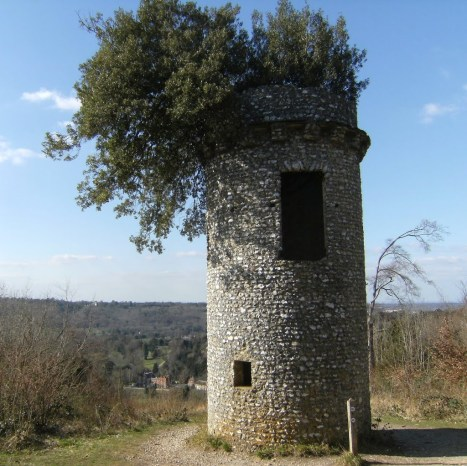 Broadwood's Folly, Box Hill Country Park