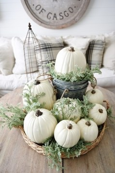 pumpkin-white