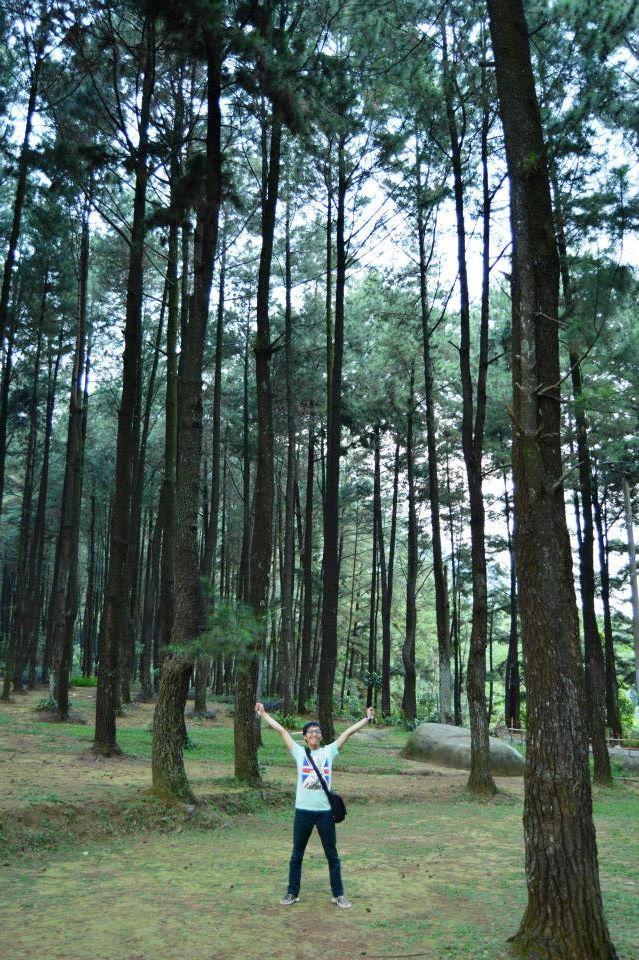 Menikmati Segarnya Hutan Pinus di Sentul City, Bogor, Jawa Barat (2/2)