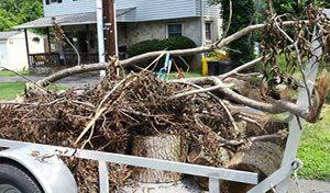 yard waste removal md