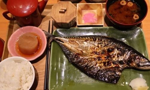 厳選干物がうまい!「ヒモノ照ラス」名古屋パルコはご飯と味噌汁が食べ放題!