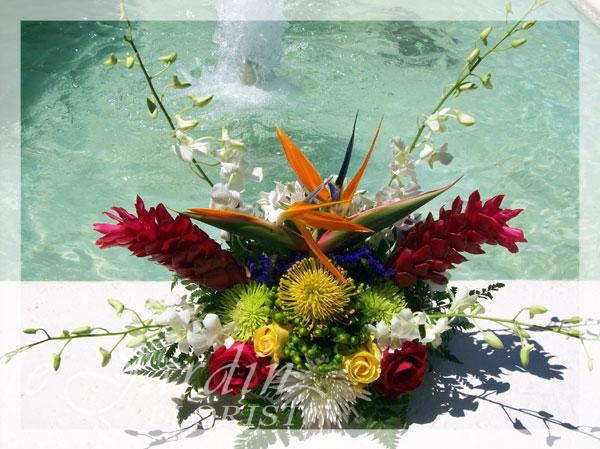 Tropical Flower Arrangements  Juno Beach Flowers  5616278118