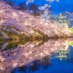 【書きました】新潟のおすすめ桜スポットをご紹介中。観光旅行メディア「ぐるたび」