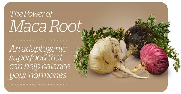 9 Benefits of Maca Root (and Wonderful Side Effects)
